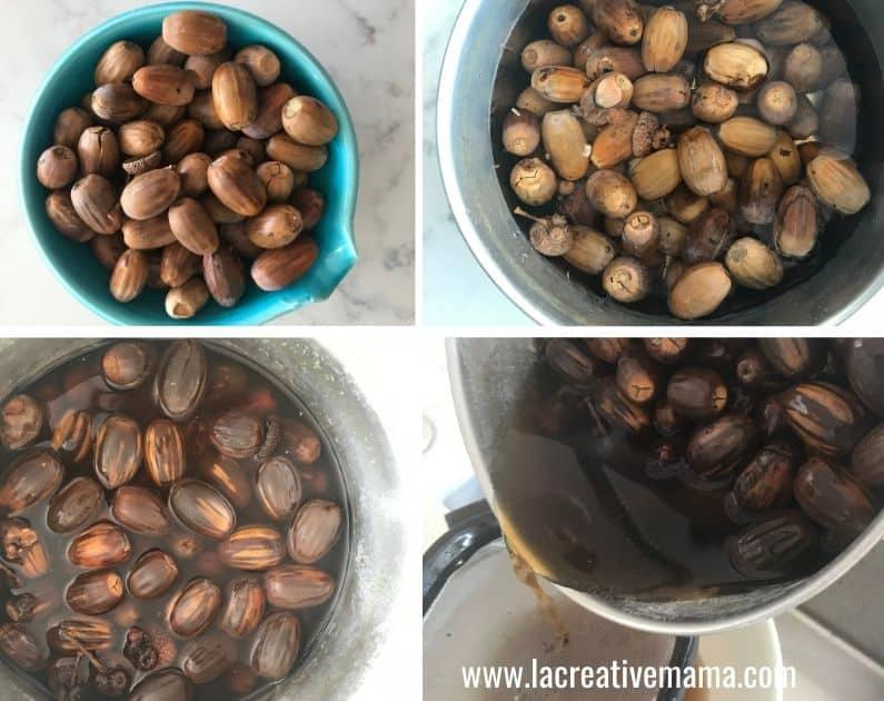 black dye with acorns