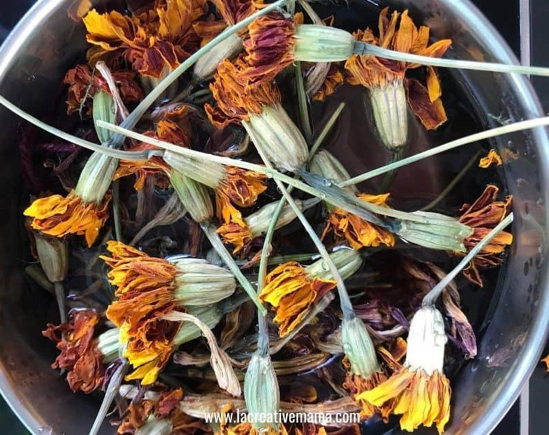 marigolds solar dyeing