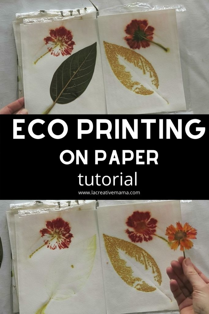 eco printing on paper using ferrous sulfate dip and alum mordant