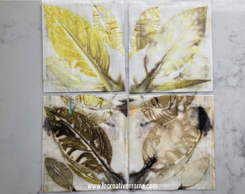 eco print on paper example