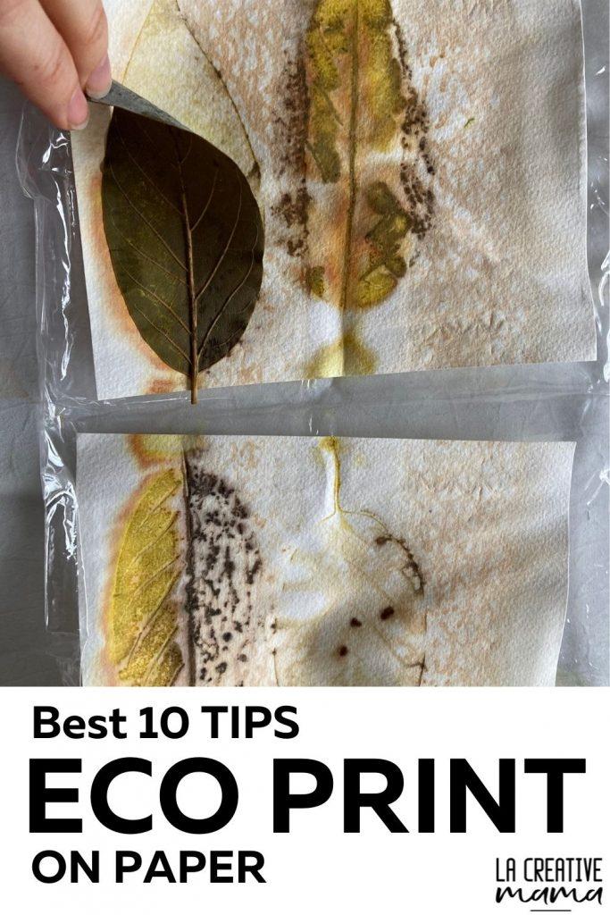 Eco print on paper tutorial ten best tips